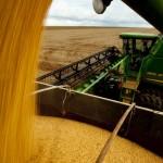 Em Mato Grosso, cotação da soja acompanhou movimento da Bolsa de Chicago na semana passada (Foto: José Medeiros/Ed.Globo)